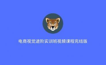 电商视觉进阶实训班视频课程完结版(2020/7/12)