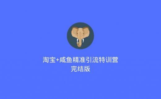 淘宝+咸鱼精准引流特训营完结版(2020/7/13)