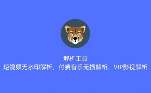 解析工具:支持短视频无水印解析、付费音乐无损解析及VIP影视解析