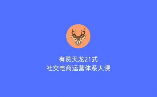 有赞天龙21式:社交电商运营体系大课(2020/7/13)