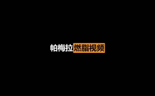 帕梅拉燃脂视频课程全套(2020/8/10)