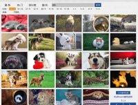 """wallhaven:一款专门爬取 """"wallhaven"""" 网站壁纸的软件,纯中文"""