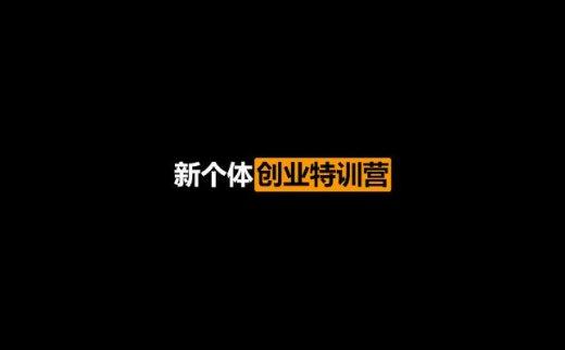 新个体创业特训营完结版(2020/12/31)